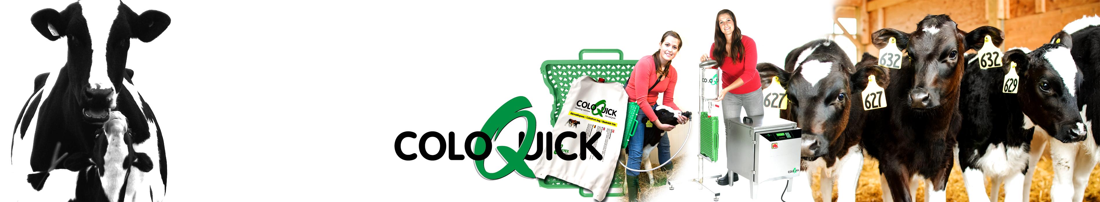 banner-colo-quick